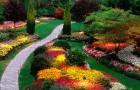 Цветочные клумбы и грядки