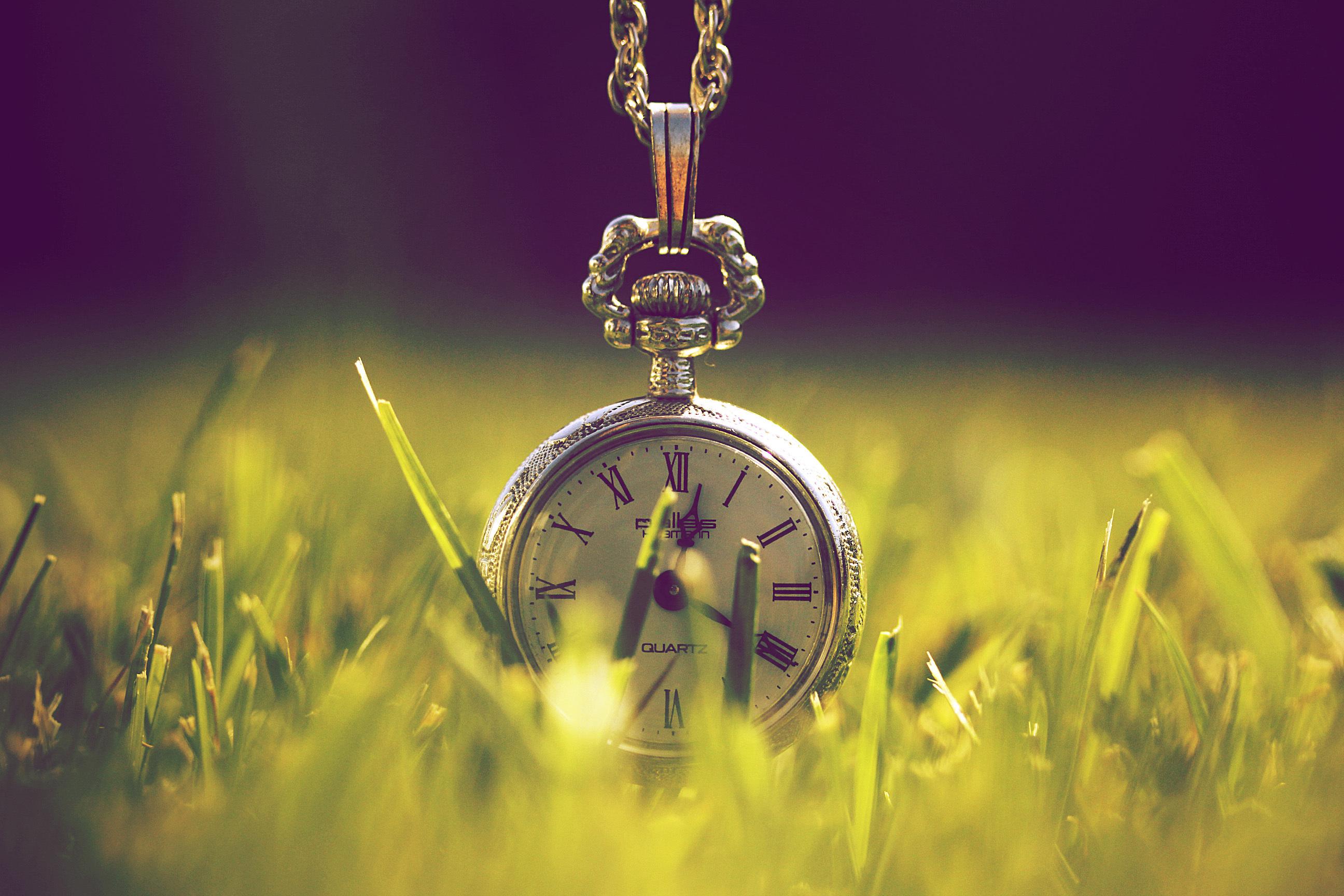 Оптимальные сроки посева
