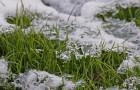 Блестящий вид в зимнюю стужу