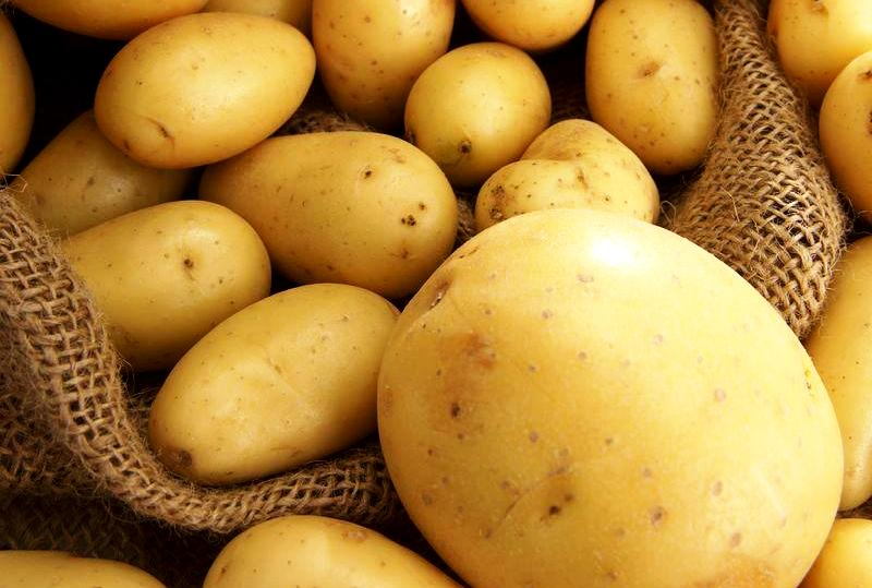 Украина может потерять до 10% урожая картофеля и овощей
