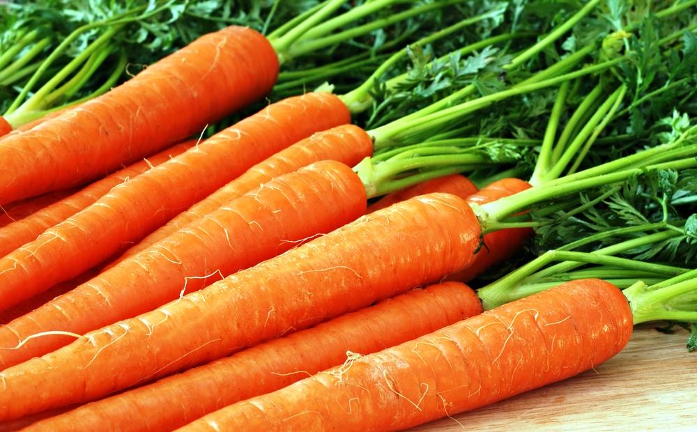 Первая местная морковь нового урожая начала поступать в магазины Германии