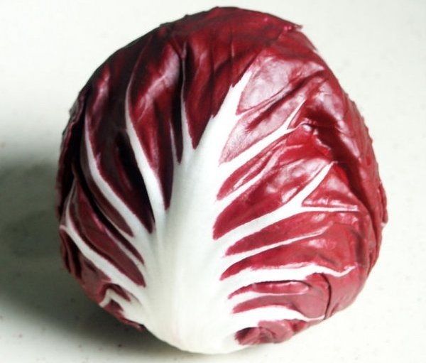 Салат цикорный