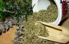 сборов и препаратов из трав
