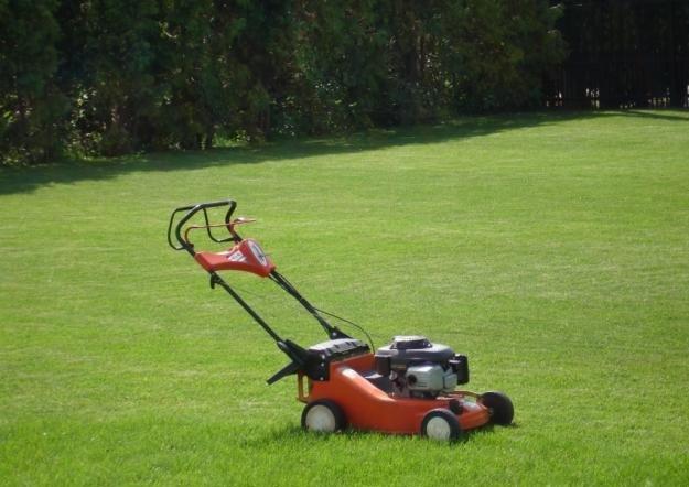 Какой лучше использовать каток для газона?