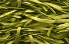 Как сушить зеленую фасоль?