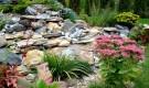 Какие растения высаживают в каменистом саду
