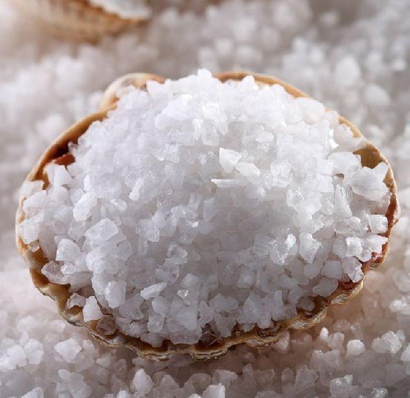 Лечение деревьев раствором поваренной соли