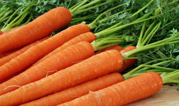 На зиму морковь сушат, а можно ли ее солить?