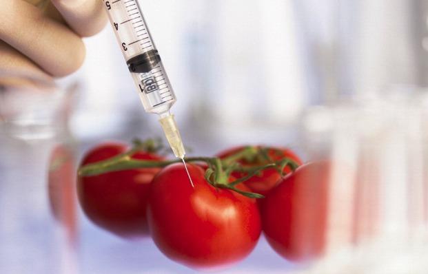 Натуральная альтернатива ГМО - замена микробиома у растений