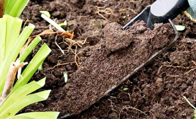 Нейтральные почвы