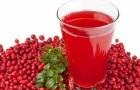 Сок из брусники без сахара