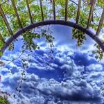 Арки в саду3