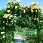 Арки в саду4