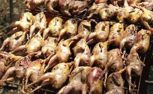 Кебаб из перепелок по-узбекски