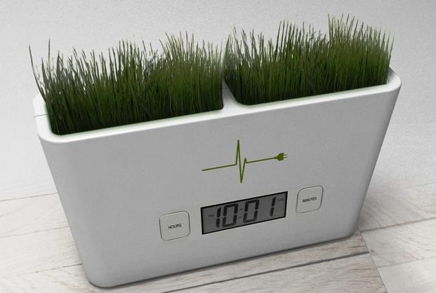 Новый источник чистой энергии: Живые растения