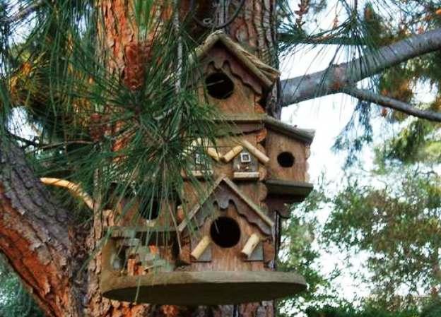 Птичьи домики