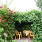 Садовые экраны, ширмы, решетки2
