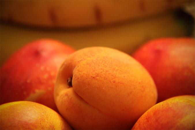 Сорт абрикоса: Краснощёкий из Николаева