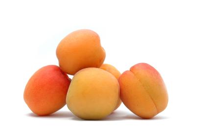 Сорт абрикоса: Саянский