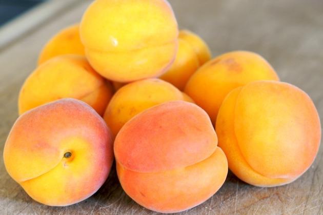 Сорт абрикоса: Сын Краснощёкого