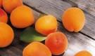 Сорт абрикоса: Ульянихинский