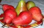 Сорт груши: Лесная красавица (Александрина, Мари-Луиз)