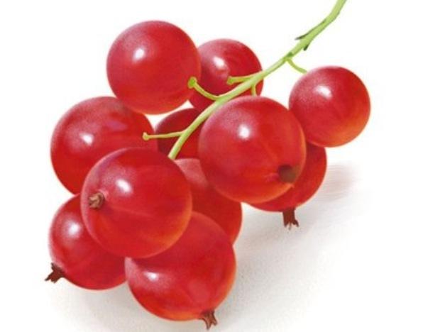 Сорт красной смородины: Уральская красавица