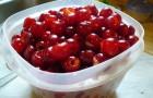 Сорт вишни обыкновенной: Градская