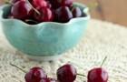 Сорт вишни обыкновенной: Краса Татарии