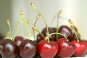 Сорт вишни степной: Саламатовская