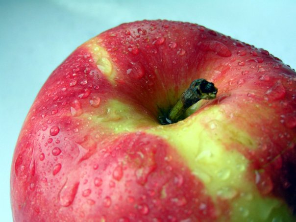 Сорт яблони: Августа
