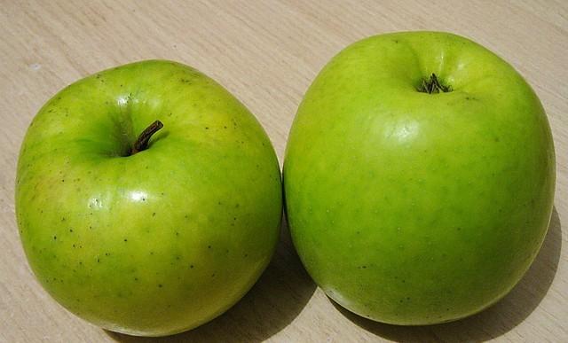 Сорт яблони: Ренет сочинский
