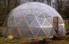 Теплица в форме геодезического купола