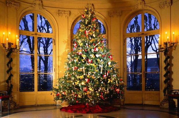 Искусственная елка на Новый год губительнее для экологии