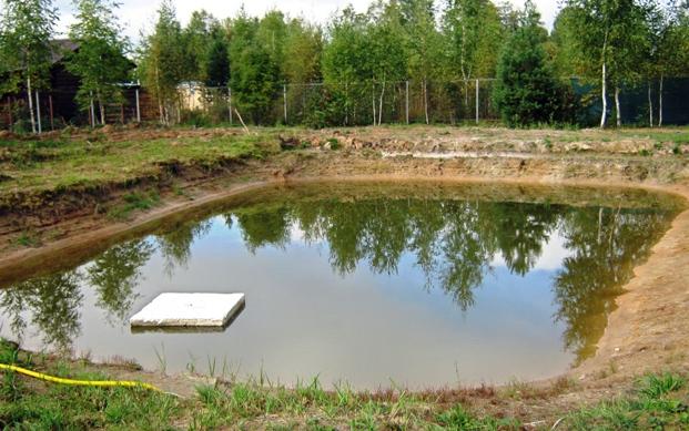 Декоративно-продуктивный пруд