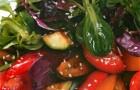 Салат из овощей гриль с заправкой из сока оливок