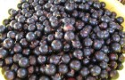 Сорт смородины черной: Купалинка