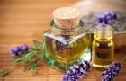 Свойства и дозировки эфирных масел применяемых в бане