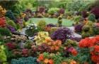 «Утопленный сад»