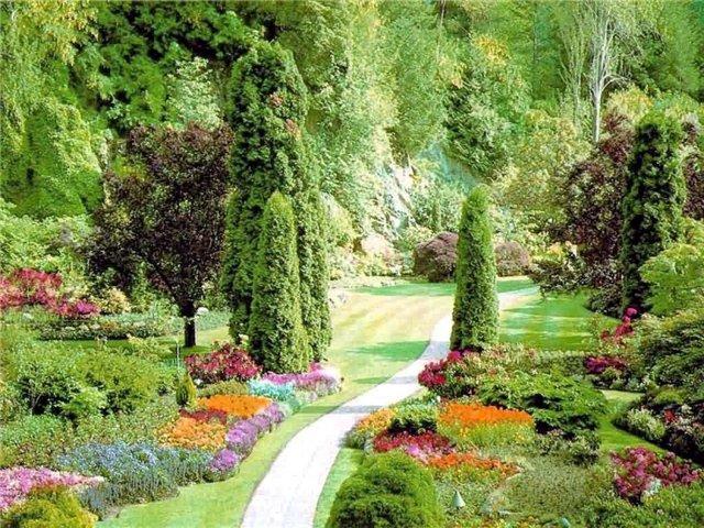 Что сделать чтобы сад поднялся?