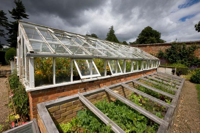Где лучше выращивать овощи?
