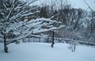И зимой на даче есть работа