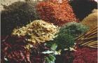 Какая польза от ароматических трав?