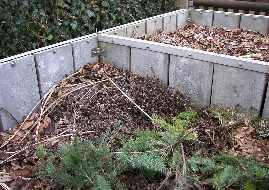 Компост из опавших листьев