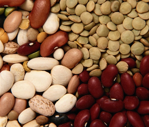 Можно ли сажать пораженные семена фасоли?