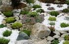 Мульчирующие материалы для альпийских горок