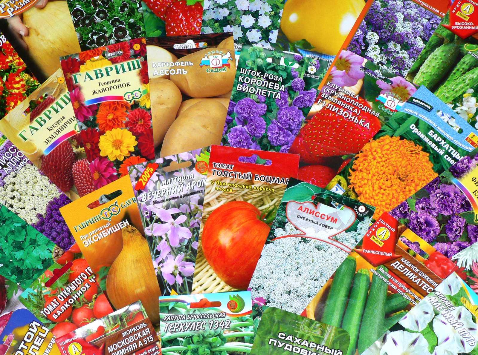 Секреты красочной упаковки семян