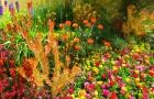 Составление плана цветника