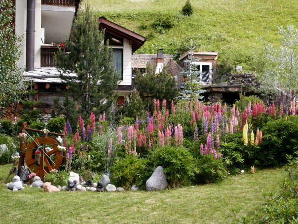 Цветник в старом плодовом саду