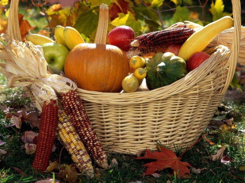 Влияет ли астрология на урожайность?
